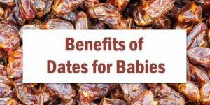 Healthy Benefits of Eating Dates for Babies